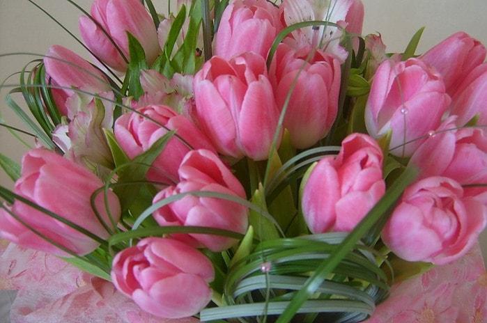 Тюльпаны красивая открытка 34